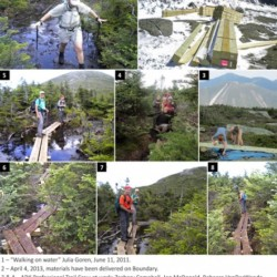 A collage showing progress on the boardwalk to Boundary Mountain