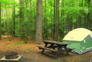 Adirondack LOJ Campground