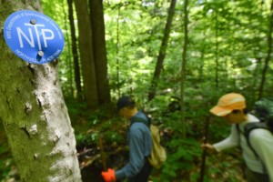 Workers walk past a sign with a trail marker