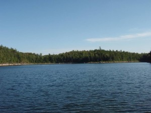 View of Lost Pond