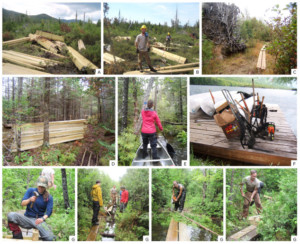 A collage of photos showing Marcy Swamp