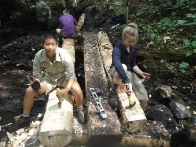 Volunteers work with hand tools to make a bog bridge