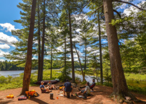 A Leave No Trace course beneath a canopy of tall trees on a lakefront