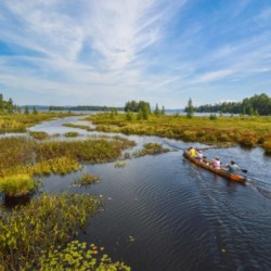 A canoe with three people heads away from the camera into a wetland