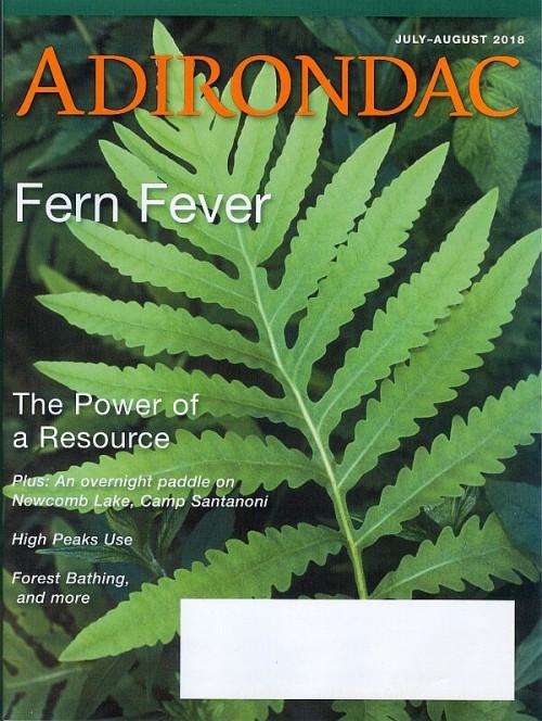 Adirondac Magazine