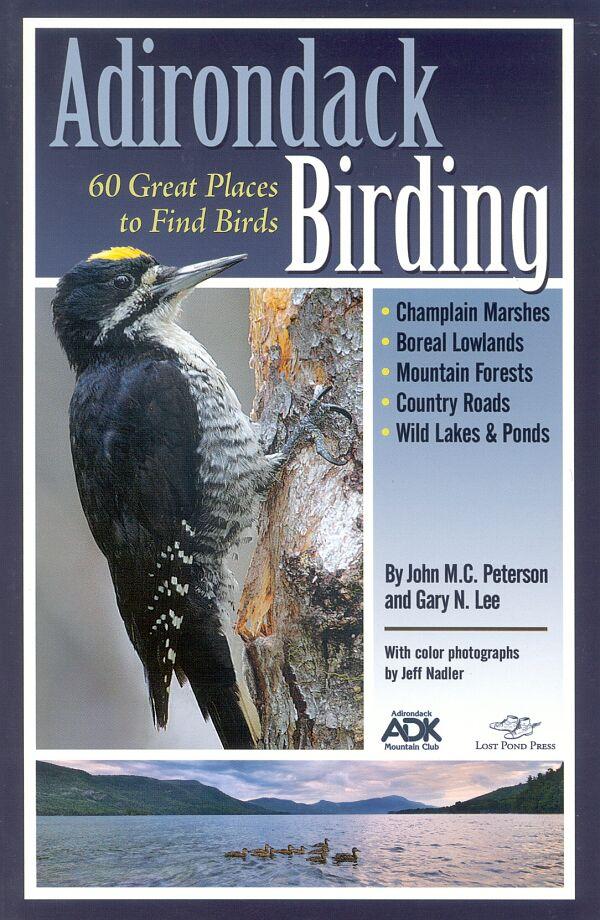Adirondack Birding book