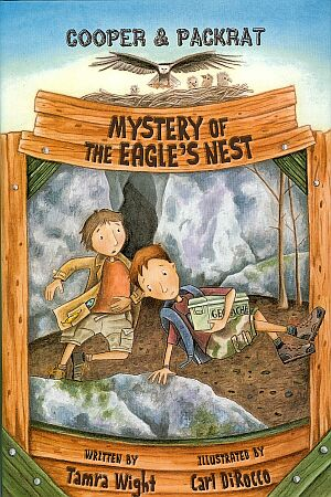 Mystery of the Eagle's Nest Book