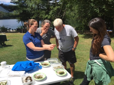 A person shows invasive water species to viewers at a table
