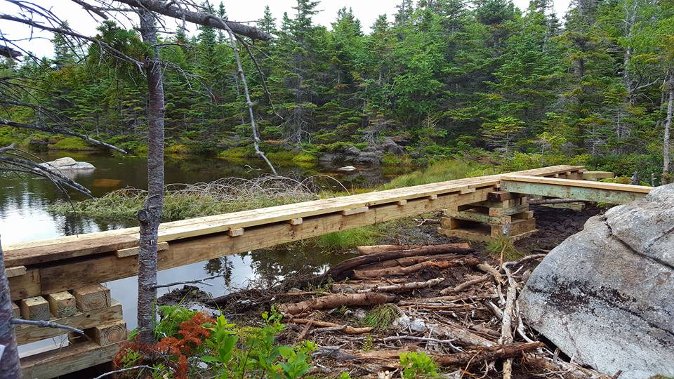 New board walk over Lake Mary Louise