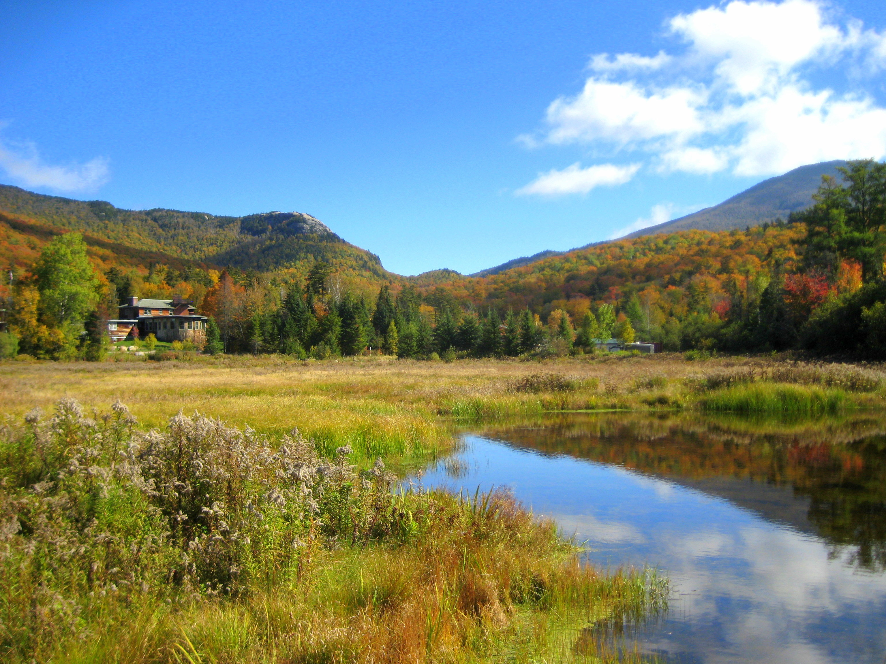 Fall colors at the North Country School