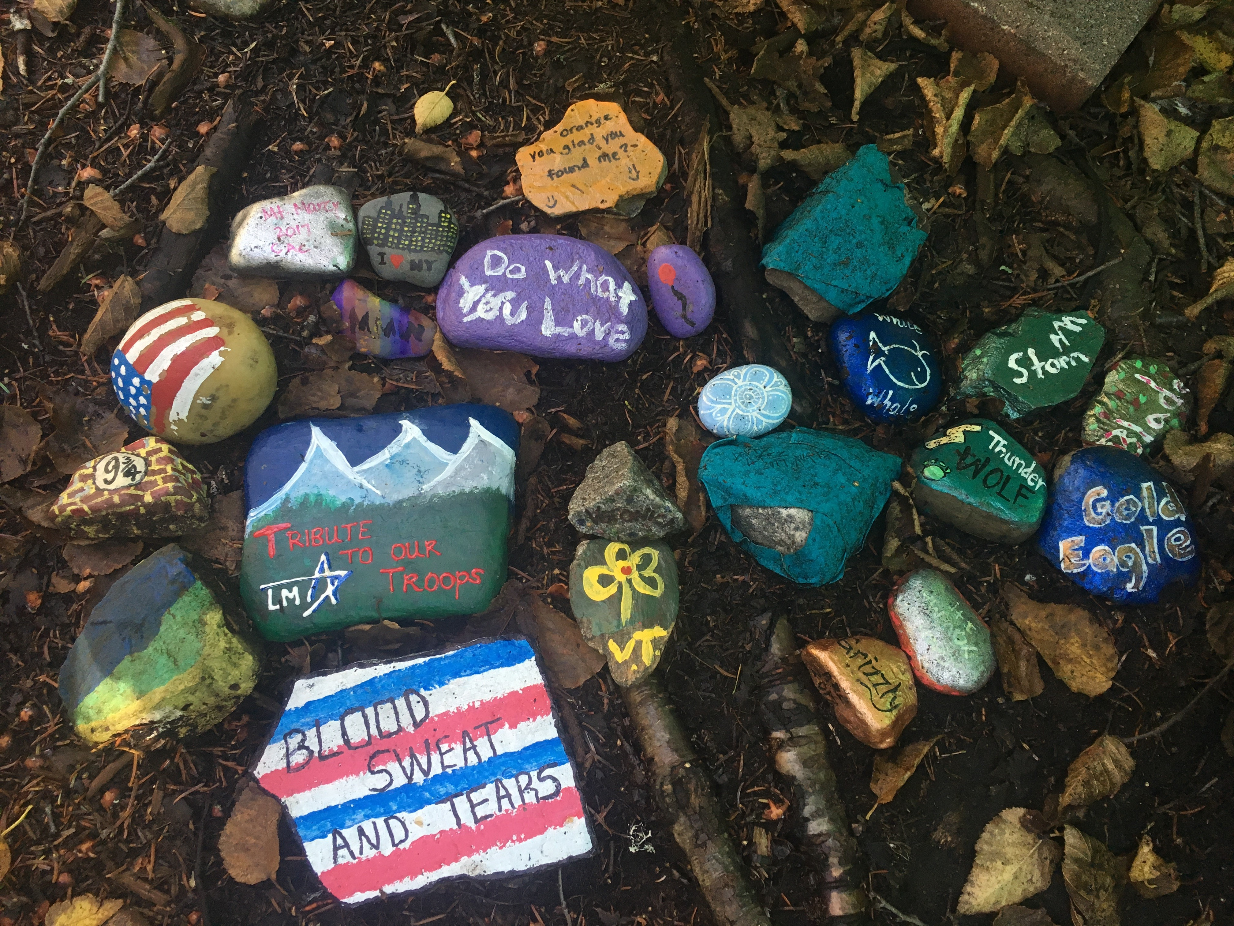 A collection of bightly painted kindness rocks
