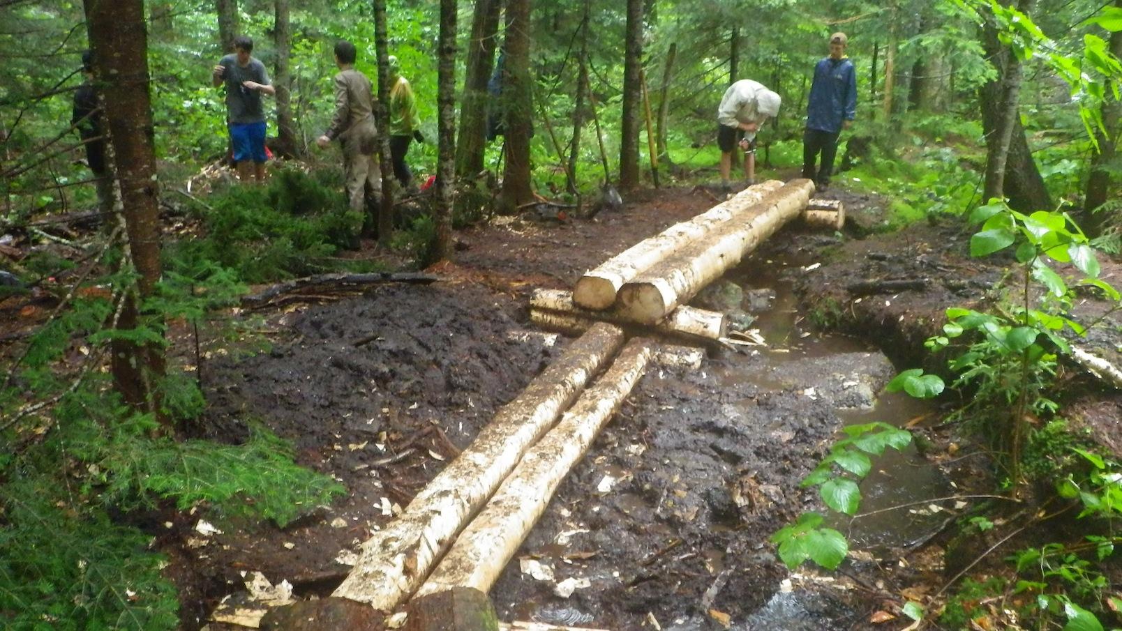 Completed bog bridges