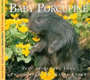Baby Porcupine Book