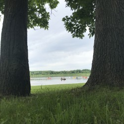 Looking between two trees toward a lake