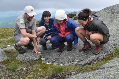 Hikers look at alpine vegetation with a summit steward