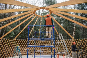 Creating the roof structure