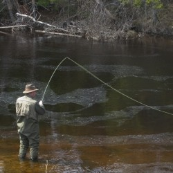 A man fly fishing