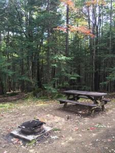 Campground Cabin Firepit