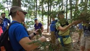 Hemlock Hike in Moreau Lake State Park