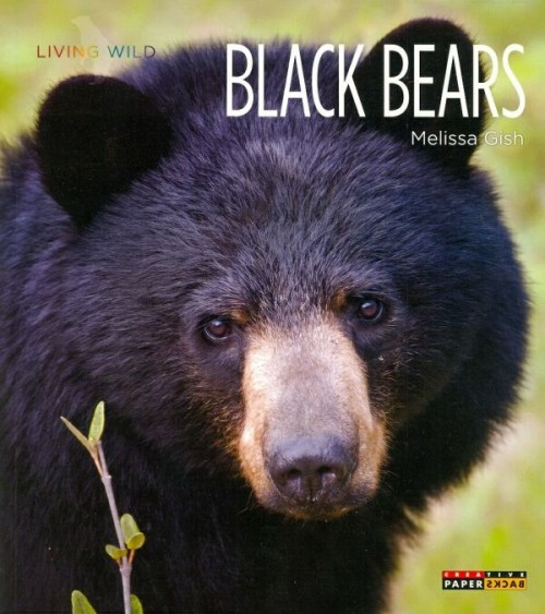 Living Wild Black Bears Book