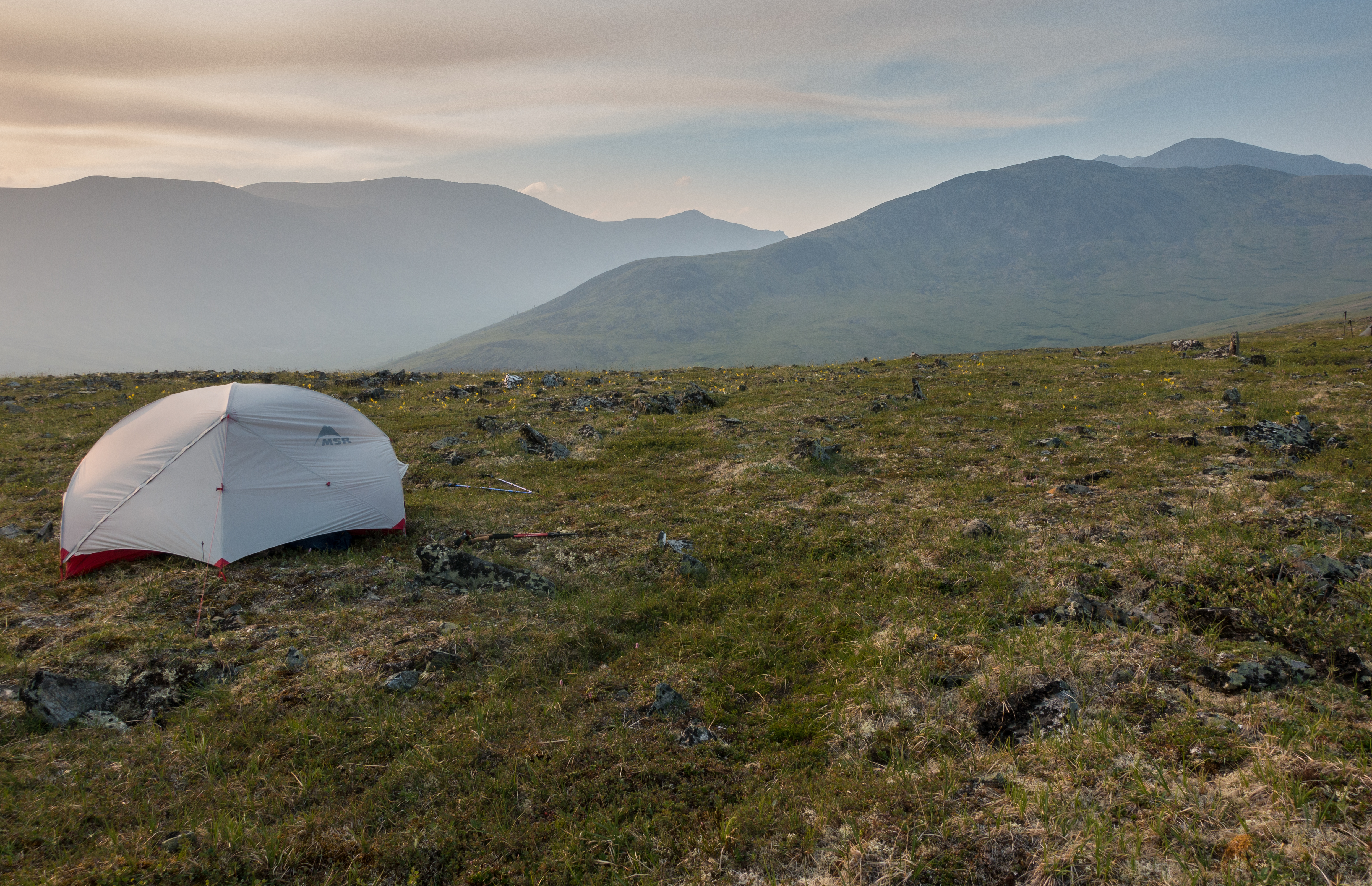 A tent pitched in an Alaskan meadow