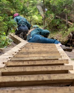 A ladder leading up to two trail crew members at work