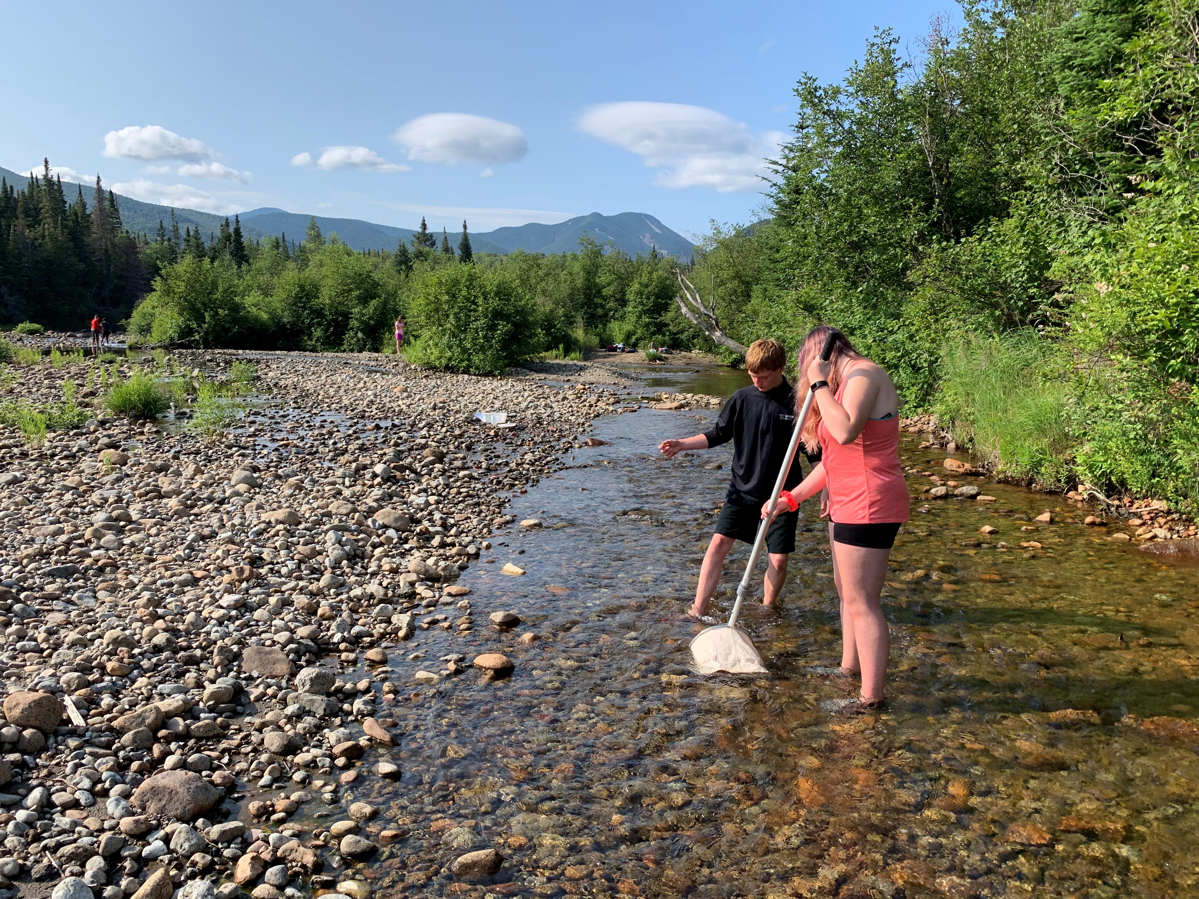 Two program participants net for macroinvertibrates in a river