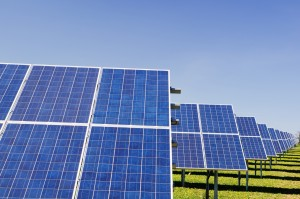 A row of solar panels