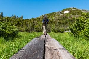 A hiker walks on a boardwalk toward the summit of Marcy
