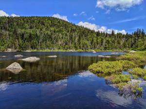 Shoulder season water scene