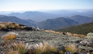Adirondack Alpine Vista