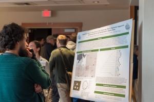 A participant views a scientific research poster board