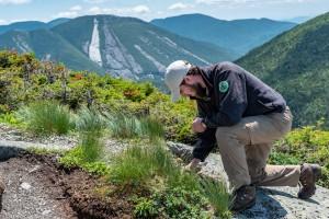 A summit steward builds a rock wall