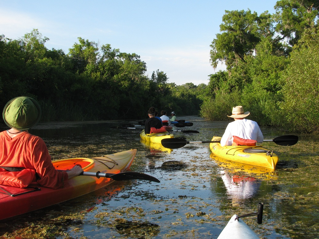 everglades paddlers