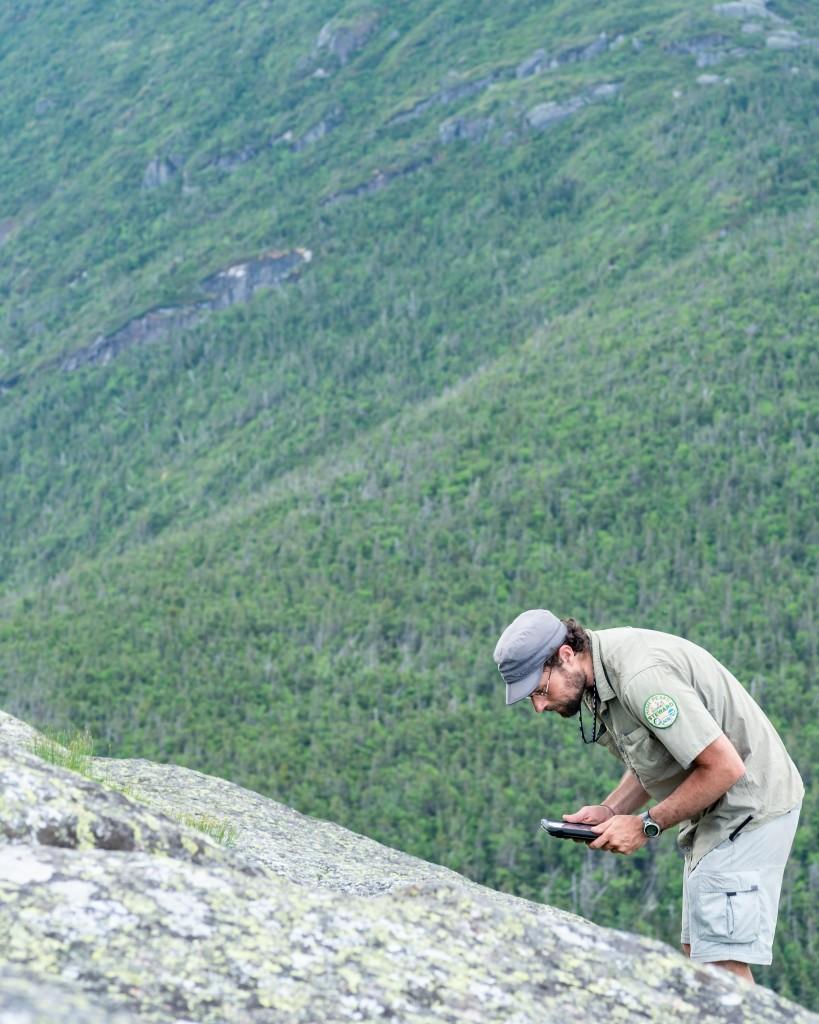 A man leans over a plot of alpine vegetation