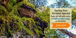spring membership special $5 off