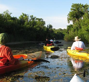 Everglades paddlers