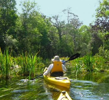 Kayaker in yellow