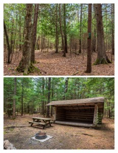 A front and back view of a leanto