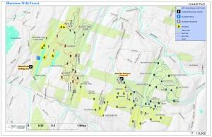DEC Map Bluestone Wild Forest