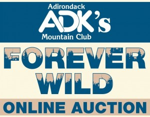 Forever Wild Online Auction image