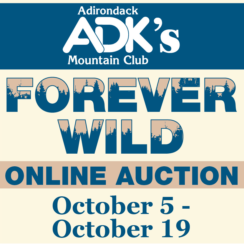 Forever Wild Online Auction 2020 image