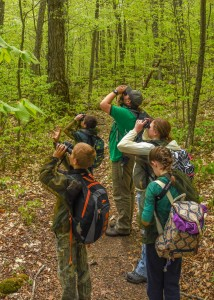 Five people look upwards with binoculars in a forest