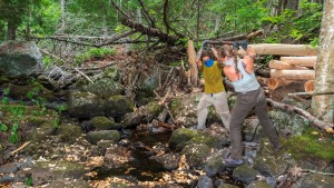 Two people pull a log over a creek