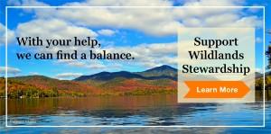Support Wildlands Stewardship
