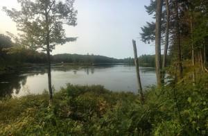 A backcountry lake