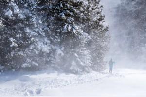 A skier in a blizzard