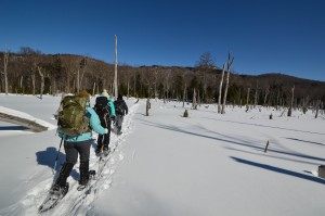 A group of people snowshoeing