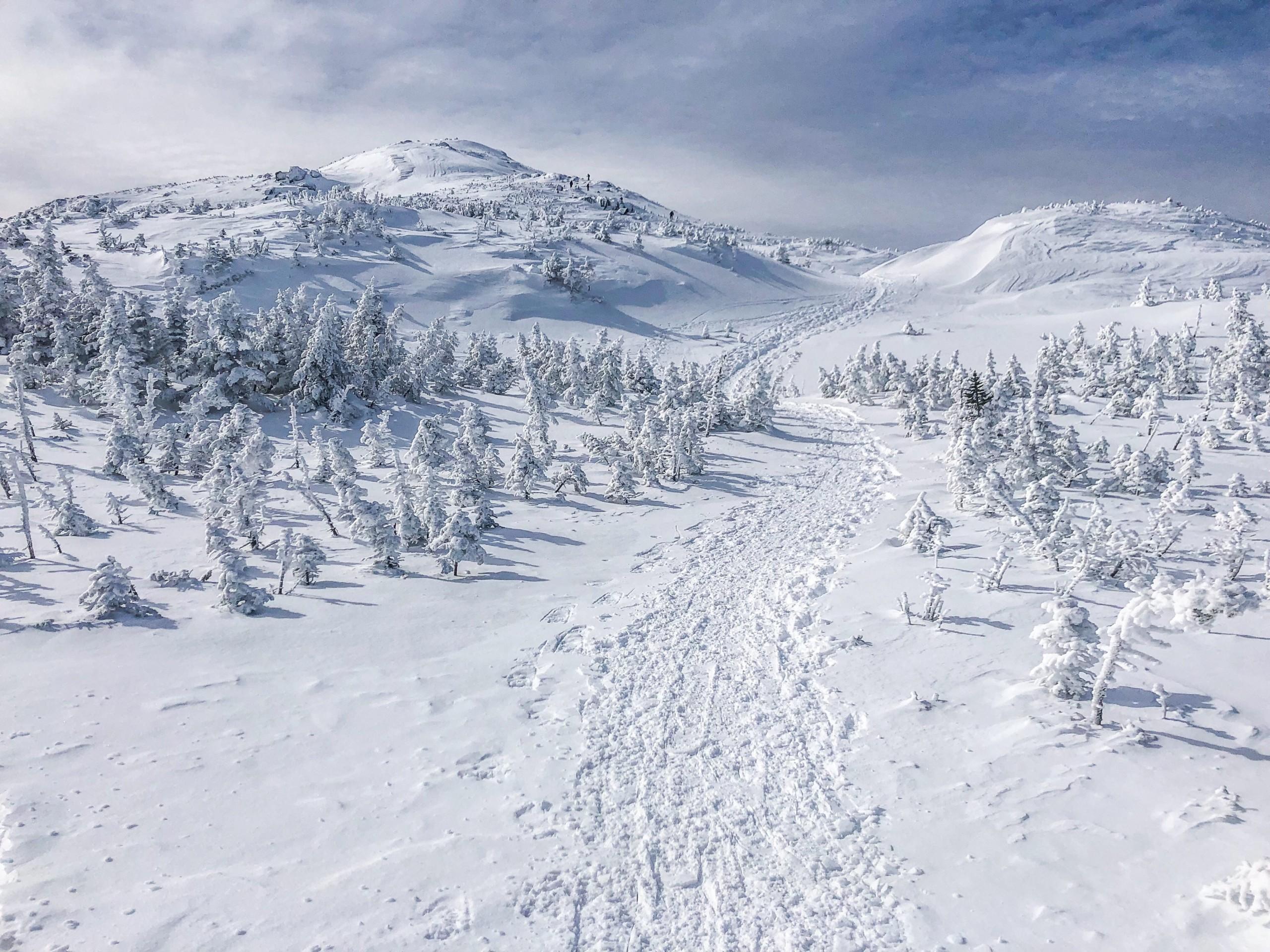 A snowy mountain summit