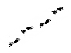 Ambler tracks